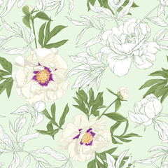 Panel Szklany Podświetlane Peonie White peony flowers. Seamless pattern, background. Colored and outline design. Vector illustration. In botanical style On tea green background..
