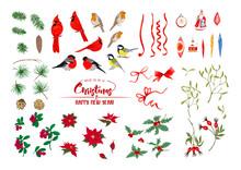 Winter Birds, Ribbons, Christm...