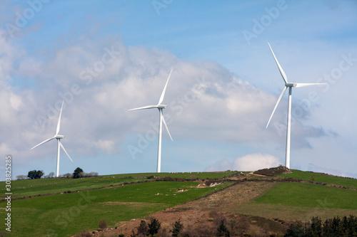 Energia Verde Canvas Print