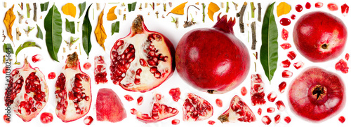 Pomegranate Collection Abstract - 303825664