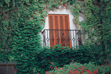 Facade With Growing Ivy And A Typical Wooden Window. Forged Metal Balcony. Nerja, Malaga, Andalusia, Spain.