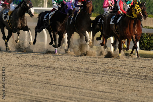 Stampa su Tela the scene of horse race in Japan