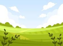 Morning Summer Landscape. Gree...