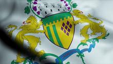 3D Waving Brazil City Flag Of ...
