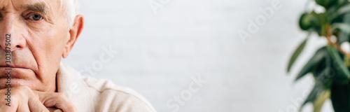 Fotografía panoramic shot of sad senior man looking at camera in apartment