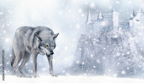 Poster Wolf Portrait of fabulous grinning gray wolf (canis lupus) ready to attack on winter snow background with castle on mountain and snowflakes. Fantasy christmas card with snowy fairy tale landscape.