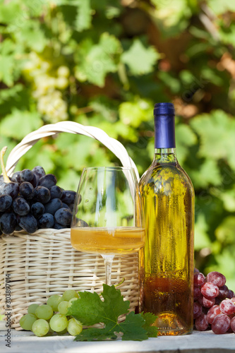 Fotografie, Obraz  Various grapes and white wine