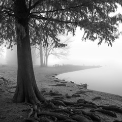Fototapeta Rzeki i Jeziora #24104