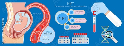 Noninvasive prenatal testing NIPT screening genetic disorders bloodstream cfDNA Wallpaper Mural