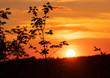 canvas print picture - Sonnenuntergang Wald Panorama Iserlohn Waldstadt Sauerland Westfalen Deutschland Sommer Abend Bäume Blätter Äste Gegenlicht romantisch Natur Schönheit Wandern Abendlicht Farben