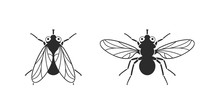 Fly Logo. Isolated Fly On Whit...