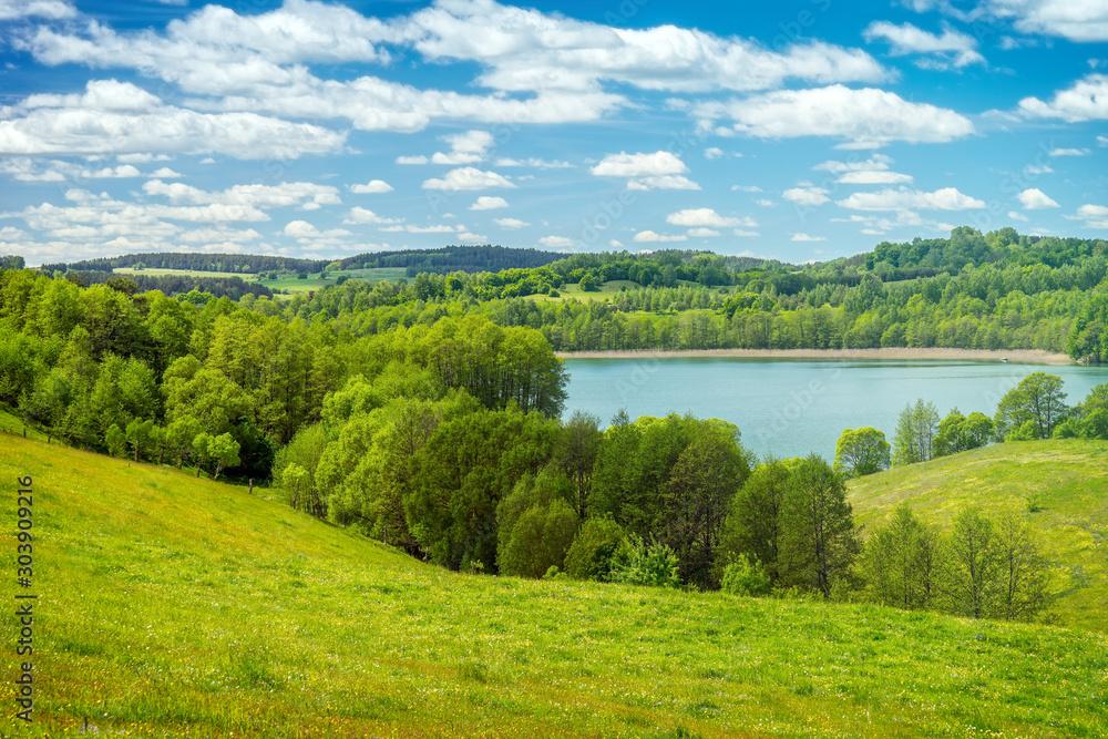 Fototapety, obrazy: Beautiful spring landscape, Lake among the greenery