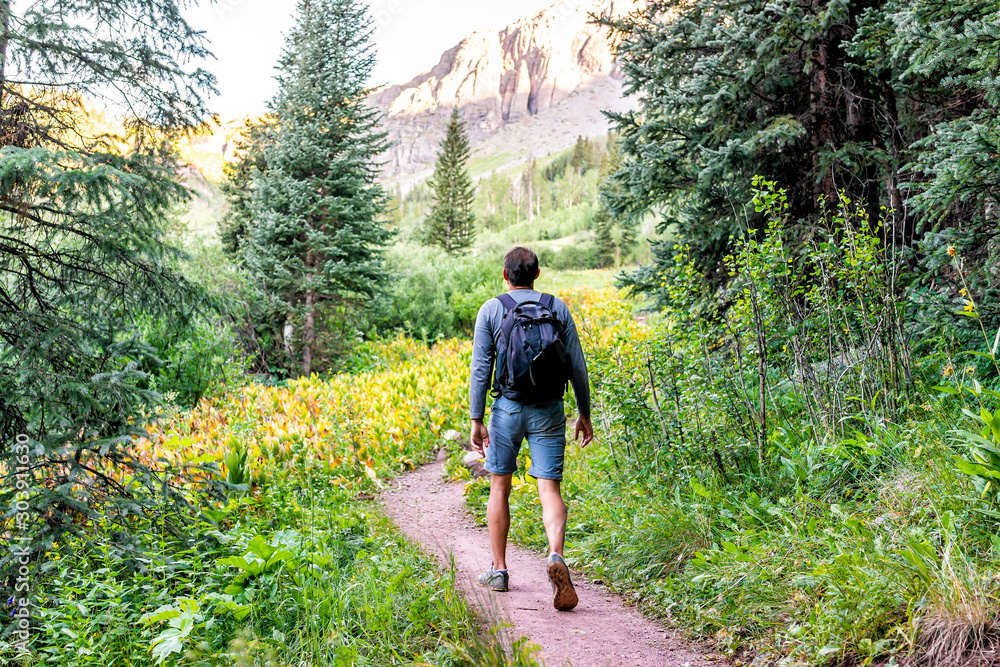 Fototapety, obrazy: Man backpack walking on trail path to Ice lake in Silverton, Colorado in August 2019 summer morning green valley and false hellebore plants