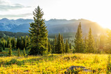 Fototapeta  - Sunrise sunlight landscape view of San Juan mountains in Silverton, Colorado in 2019 summer morning with meadow valley and spruce trees forest