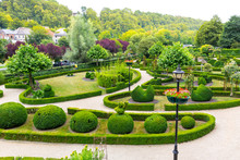 Bushes In Different Shapes, Summer Park In Europe