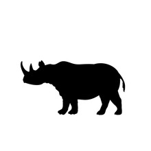 Silhouette Of Rhino. Animal Wi...