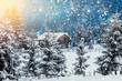Leinwanddruck Bild - Christmas background for holidays