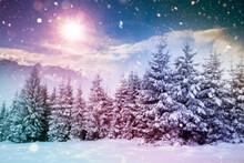 Fairy-tale Winter Landscape An...