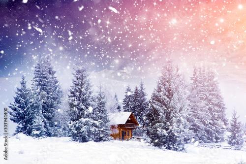 Wooden cottage in a fairy-tale winter landscape. Fototapeta