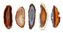 Polished Agate Slices. Isolate...