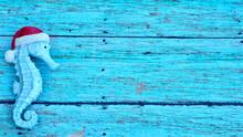 Turquoise Sea Horse Wearing Sa...