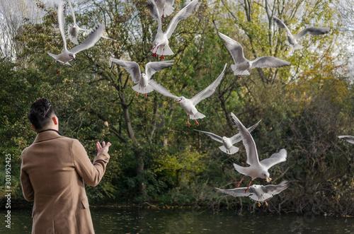 Hombre dando de comer a las aves mientras estas vuelan alrededor de él Wallpaper Mural