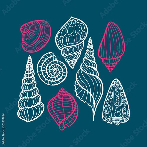 Obraz na plátně Hand drawn set of various seashell