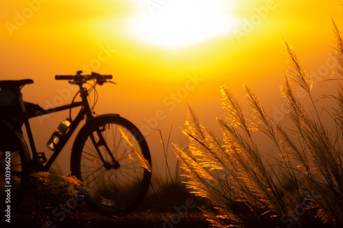Recess Fitting Bicycle Vintage bicycle Flowering grass and the evening sun.