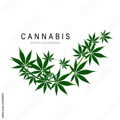 Photo medical marijuana, cannabis green leaf logo. vector illustration.