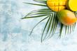 Leinwandbild Motiv Tasty mango fruit on color background