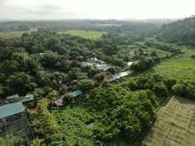 Aerial View Of A Lake Or Pond Filled With Crocodiles. Located In Jong's Crocodile Farm Of Kuching, Sarawak, Malaysia.
