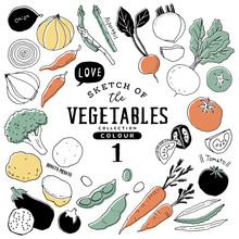 オシャレな手描き野菜...