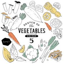 オシャレな手描き野菜セット05/カラフル