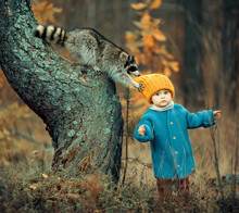 Girl And Raccoon In Autumn Forest