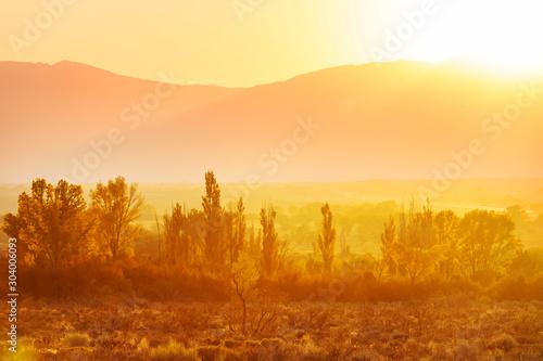 Photo sur Toile Morning Glory Autumn meadow