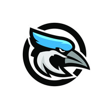 Blue Jay Bird Color Head Masco...
