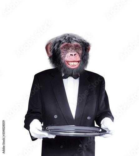 chimpanzé, maître d'hôtel , tenir un objet, tenir un plateau, expression,  smoki Wallpaper Mural