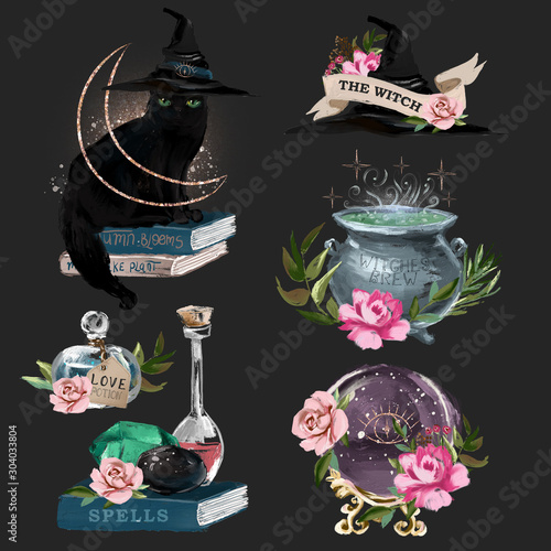 Tablou Canvas Witchcraft oil painted design elements - black cat in the hat, witch hat with fl