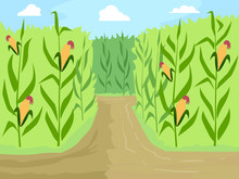 Corn Maze Entrance Path Illustration