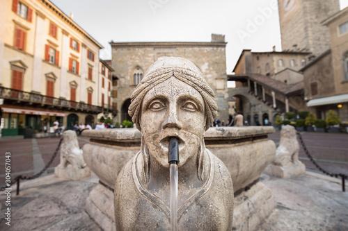Платно Bergamo