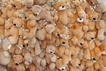 Decoration Wall Of Many Beige Teddy Bears.