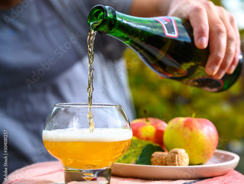 Fotomural Tasting of french apple cider made from new harvest apples outdoor in orchard