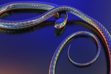Snakes Abstract  Iridescent And Holographic