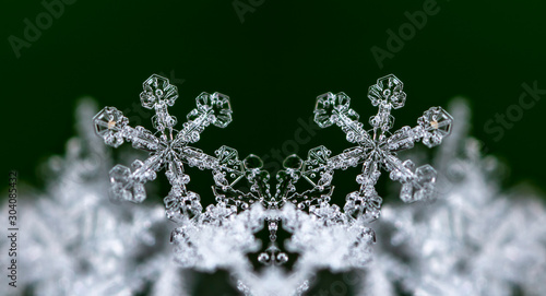 Fotomural  photo real snowflakes during a snowfall, under natural conditions at low tempera