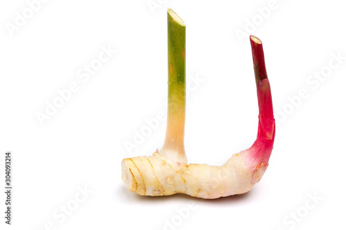 Valokuva Fresh galangal placed on a white background with clipping path.