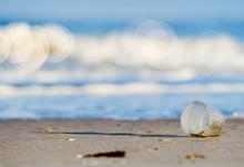 Plastic Industrial Waste Rejec...