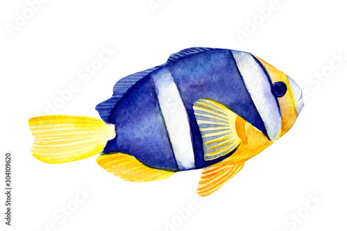 fish on isolated white background, watercolor illustration, hand drawing Wallpaper Mural