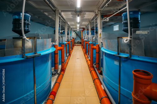 Round tanks for growing sturgeons with automatic feeder in fish farm with closed Canvas Print