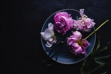 Overhead Shot Of Peony Flowers - Horizontal