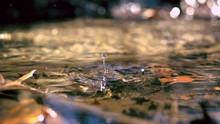 Water Drop Making Ripple In Cr...